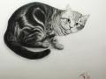 作品3.黒猫見上げる