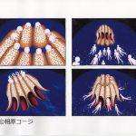 aihara_works_03
